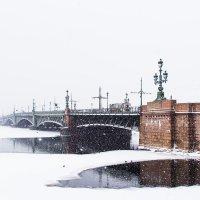 Троицкий мост :: Николай