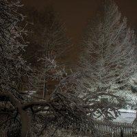 Ночь. Вид из окна. :: Анна Никонорова