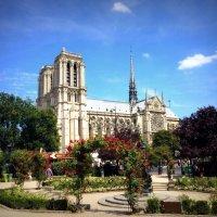 Собор Парижской Богоматери :: Екатерина Новгородцева