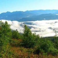 Плывущие облака :: Милешкин Владимир Алексеевич