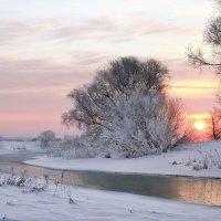 Розовый рассвет :: Сергей Михайлович