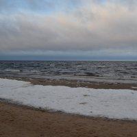 Балтика. :: zoja