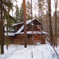Домик в лесу :: Андрей Снегерёв