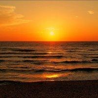 Солнечного воскресного дня! :: Swetlana V