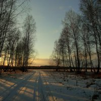 Вечерний свет. :: nadyasilyuk Вознюк