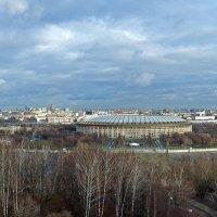 Лужники (Вид с Воробьевых гор) :: Сергей Фомичев