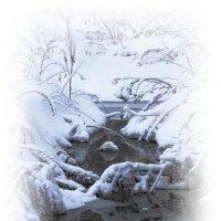 После снегопада... :: Tatiana Markova