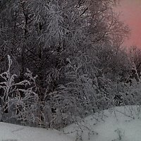 Морозный зимний вечер :: Ольга Васильева