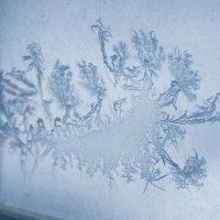 Узоры на окне :: Ольга Кельник