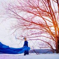 Девушка-Зима :: Dina Ross