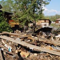После наводнения в с, Чарышское :: Кристина Воробьева