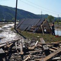 После наводнения 2014 с. Чарышское :: Кристина Воробьева