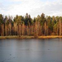 Непрочный первый лёд :: Андрей Снегерёв