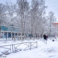 И в Питере зима... :: Сергей Михайлов