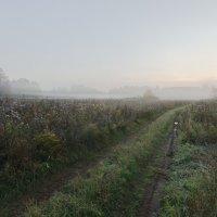 Сентябрьское утро :: Валентин Котляров