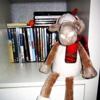Гламурная овечка зачиталась . :: Мила Бовкун