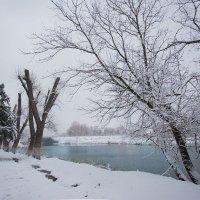 Зима/Winter :: Tory Deeva