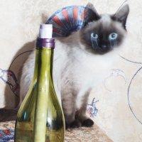 Анти-чеширская кошка :: Александр Фирсов