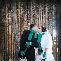 зимняя прогулка :: Елена Дмитриева