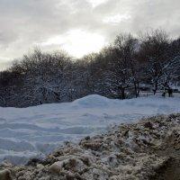 Зима на один день :: Наталья Джикидзе (Берёзина)