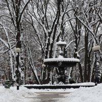 Зима в Мариинском парке Фото№1 :: Владимир Бровко