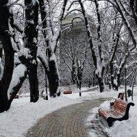 Зима в Мариинском парке Фото №3 :: Владимир Бровко