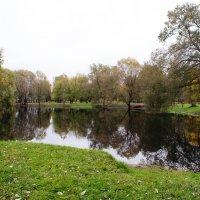 Пруд в Лефортово :: Николай Дони