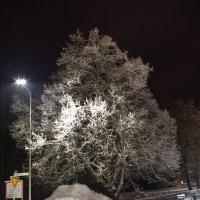Зимняя ночь. :: Александр