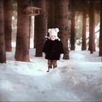 Зимние приключения Варвары :: Олеся Гордей