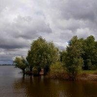Перед дождёмъ :: Dr. Olver  ( ОлегЪ )