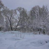 Зимний ноктюрн.... :: Tatiana Markova