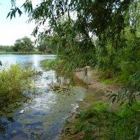 на берегу реки :: Azat