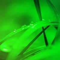 green :: Ирина Шарафутдинова