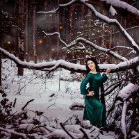Тайны леса :: Dina Ross