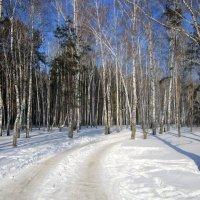 """из серии """" дороги , которые мы выбираем """". :: Мила Бовкун"""