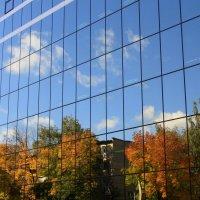 Осень в  окнах... :: Валерия  Полещикова