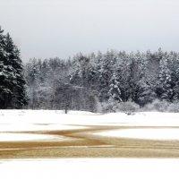Зимний пейзаж :: Андрей Снегерёв