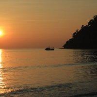 Закат солнца в кокосовом раю :: Vladimir 070549