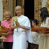Таиланд. Бангкок. Проводы в монастырь :: Владимир Шибинский
