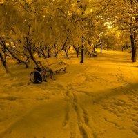 После снегопада. :: Юрий Харченко