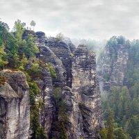 Саксонская Швейцария. Германия. :: Александр Назаров