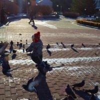 Прогулки по городу :: Вера Андреева