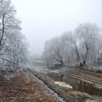 История одной провинциальной речки :: Александр Бойко