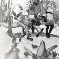 Люди и птицы :: Игорь