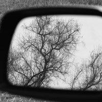 Отражение.... :: M Marikfoto