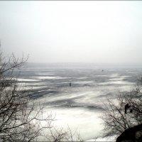 Ольховское водохранилище :: Татьяна Пальчикова