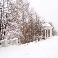 Зимний вид :: Николай Дони