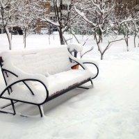 Зима :: Serg