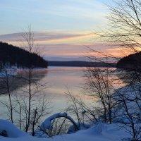 Нежные краски зимы :: Ольга