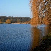 Озеро в феврале :: Alexander